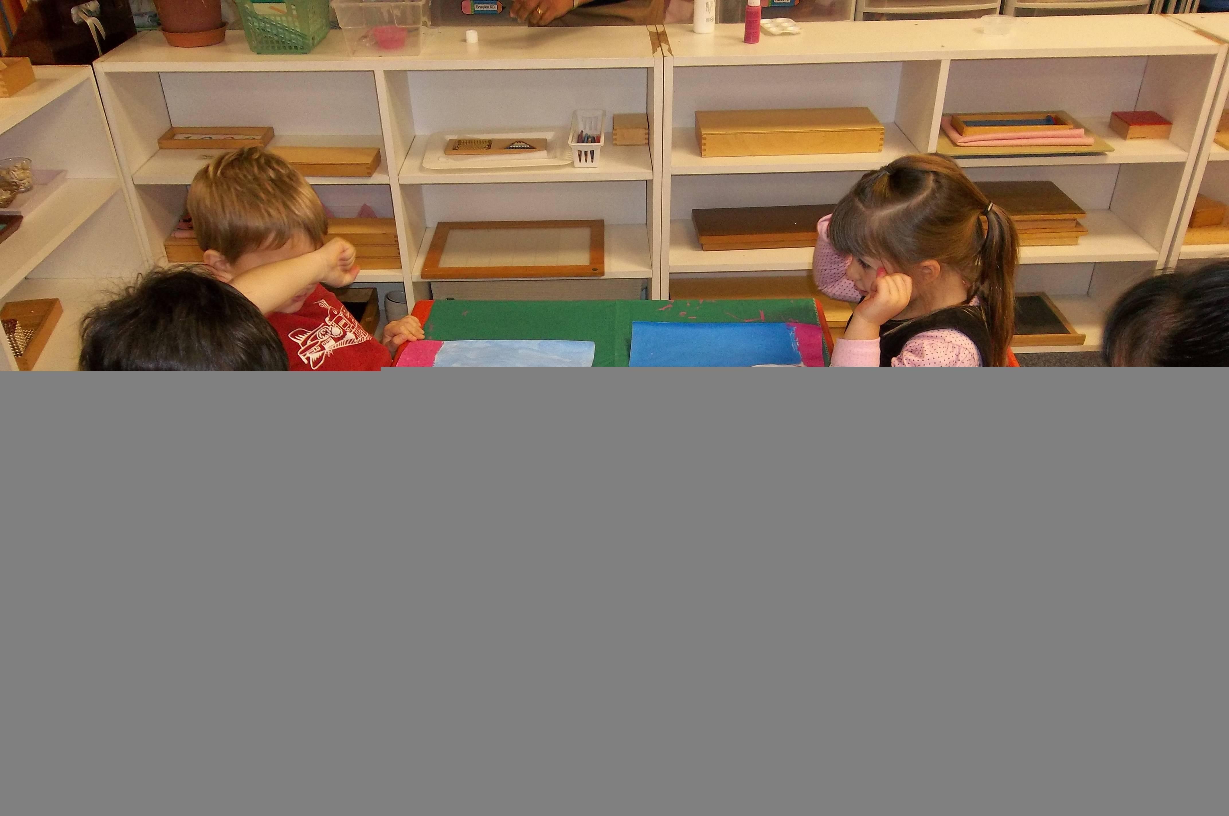 montessori essays