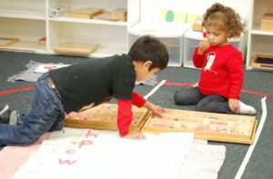 primary school program