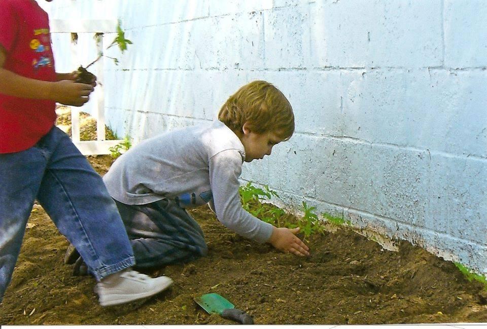 students planting veggies